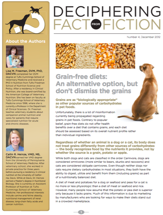 What To Know About Grain Free Diets