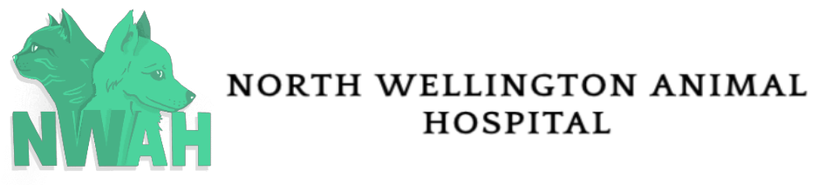 NORTH WELLINGTON ANIMAL HOSPITAL ATTENTION: WE ARE CLOSE FROM DEC 21ST TO JAN 1ST